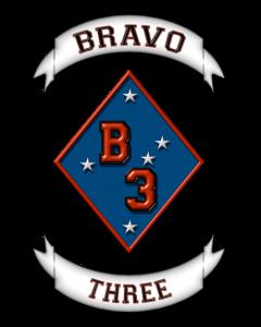 B3 Logo White BG.jpg