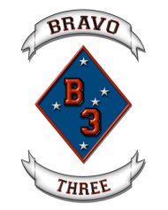 Bravo Three Careers